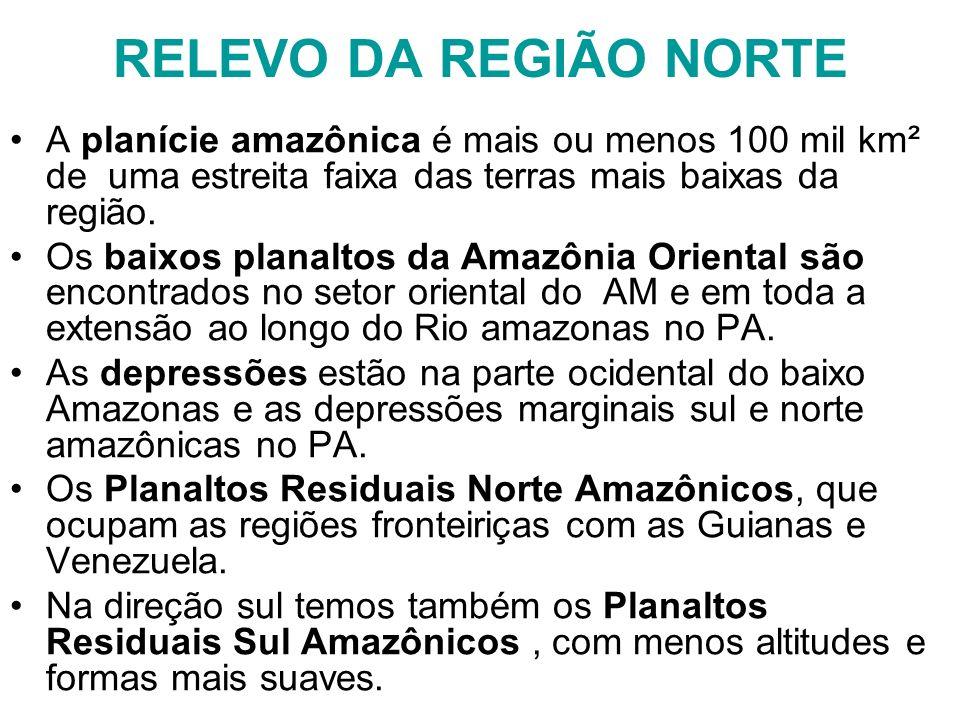 RELEVO DA REGIÃO NORTE A planície amazônica é mais ou menos 100 mil km² de uma estreita faixa das terras mais baixas da região.