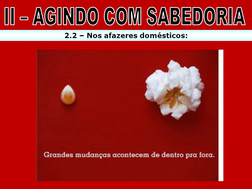 II – AGINDO COM SABEDORIA 2.2 – Nos afazeres domésticos: