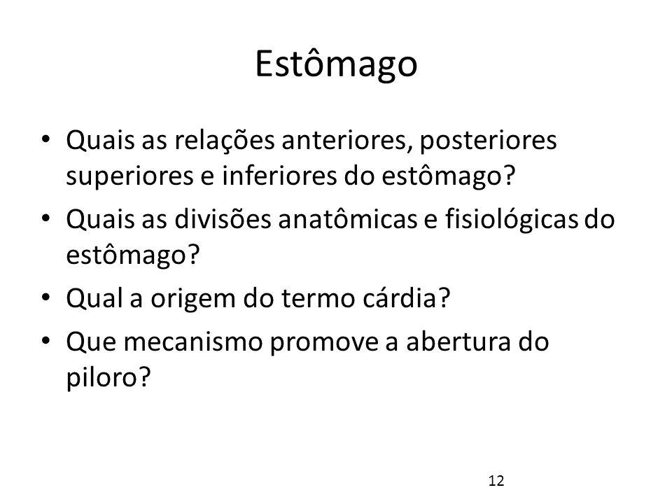 Estômago Quais as relações anteriores, posteriores superiores e inferiores do estômago Quais as divisões anatômicas e fisiológicas do estômago