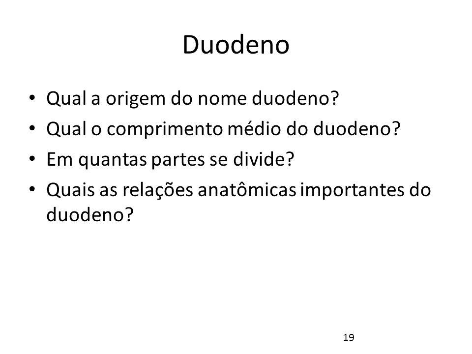 Duodeno Qual a origem do nome duodeno