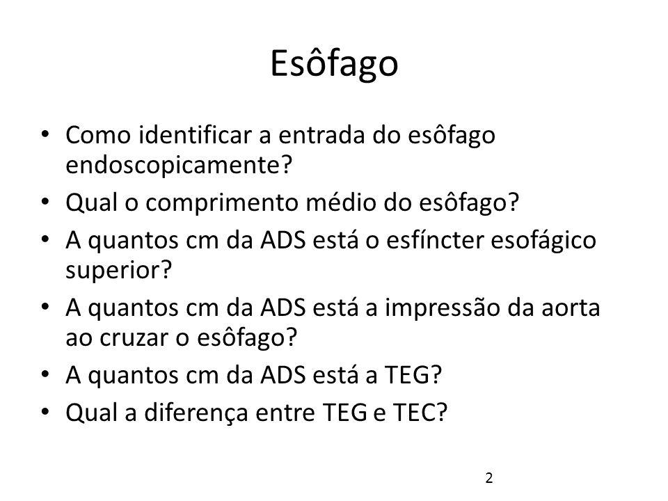 Esôfago Como identificar a entrada do esôfago endoscopicamente
