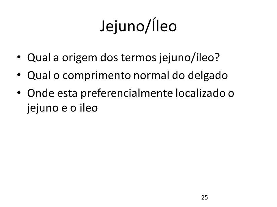 Jejuno/Íleo Qual a origem dos termos jejuno/íleo