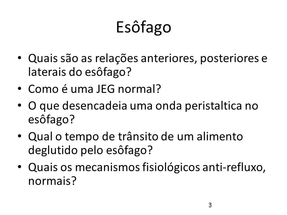 Esôfago Quais são as relações anteriores, posteriores e laterais do esôfago Como é uma JEG normal