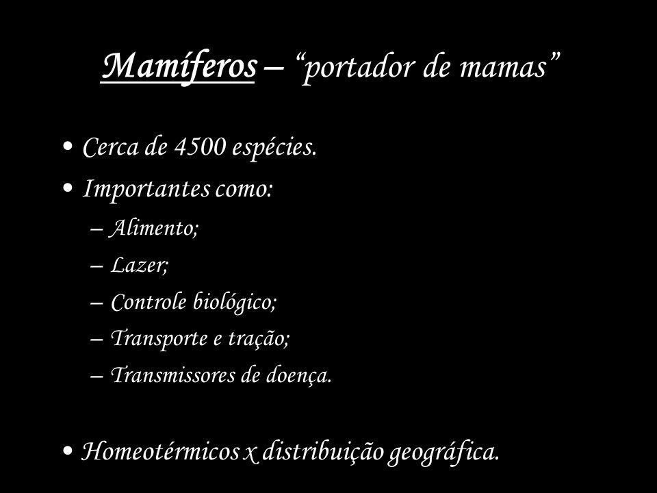 Mamíferos – portador de mamas