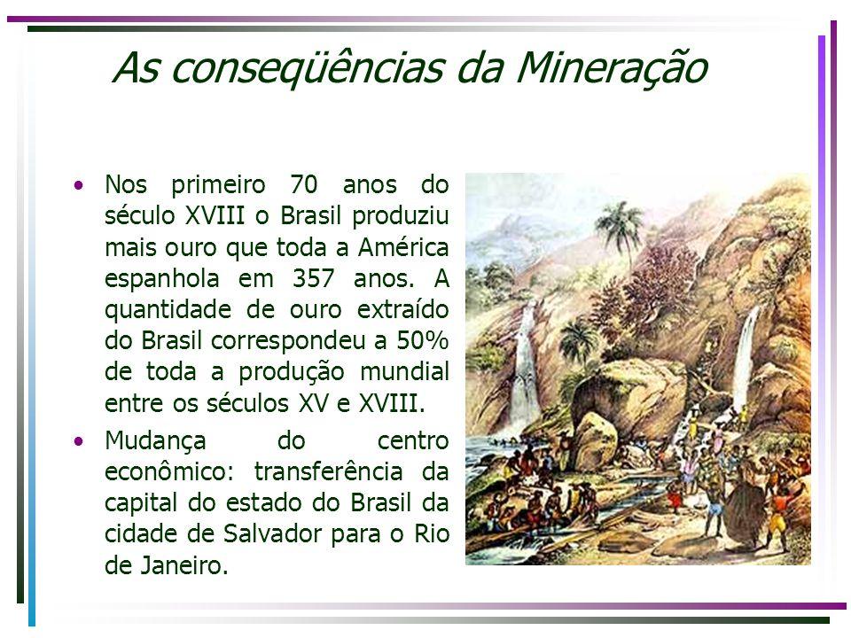 As conseqüências da Mineração