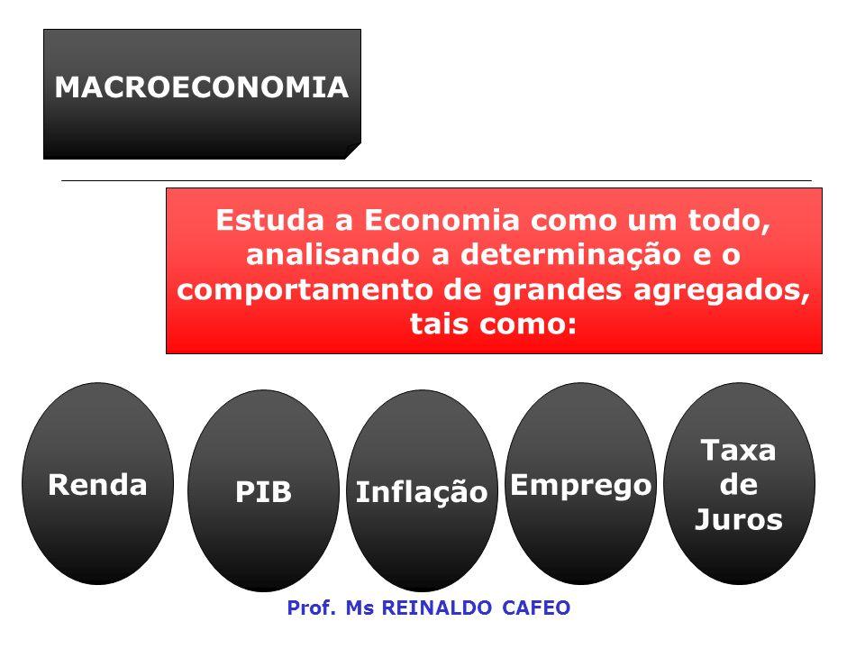 MACROECONOMIA Estuda a Economia como um todo, analisando a determinação e o comportamento de grandes agregados, tais como: