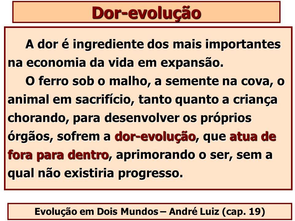Evolução em Dois Mundos – André Luiz (cap. 19)