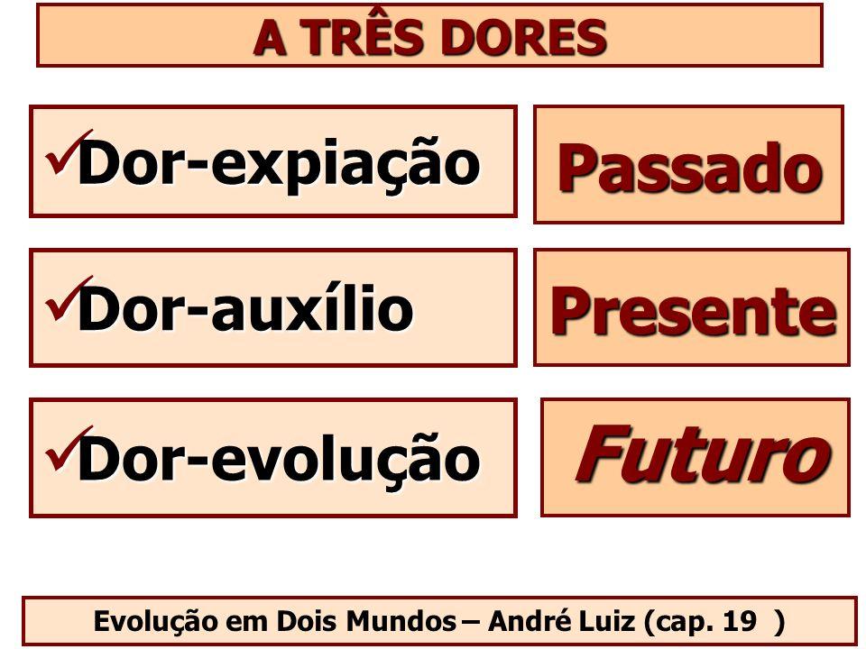 Evolução em Dois Mundos – André Luiz (cap. 19 )