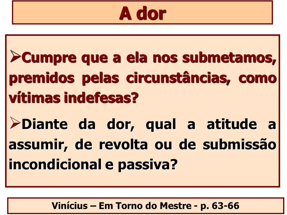 Vinícius – Em Torno do Mestre - p. 63-66