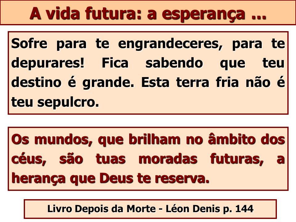 A vida futura: a esperança ...
