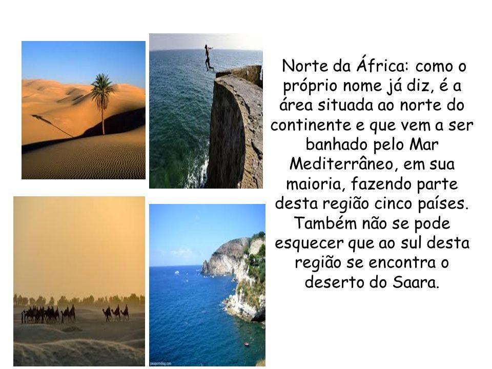 Norte da África: como o próprio nome já diz, é a área situada ao norte do continente e que vem a ser banhado pelo Mar Mediterrâneo, em sua maioria, fazendo parte desta região cinco países.