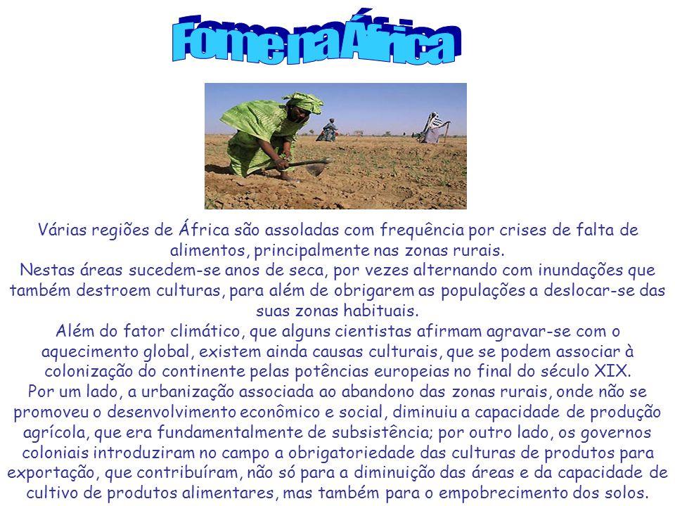 Fome na África Várias regiões de África são assoladas com frequência por crises de falta de alimentos, principalmente nas zonas rurais.