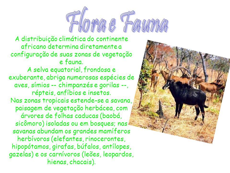 Flora e Fauna A distribuição climática do continente africano determina diretamente a configuração de suas zonas de vegetação e fauna.