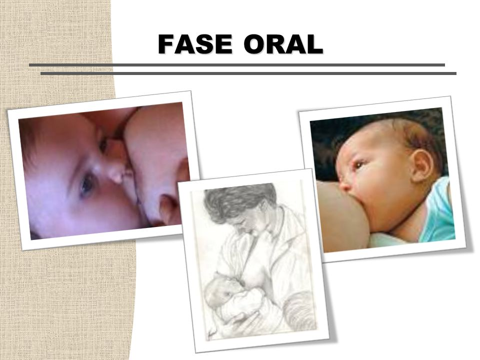 FASE ORAL