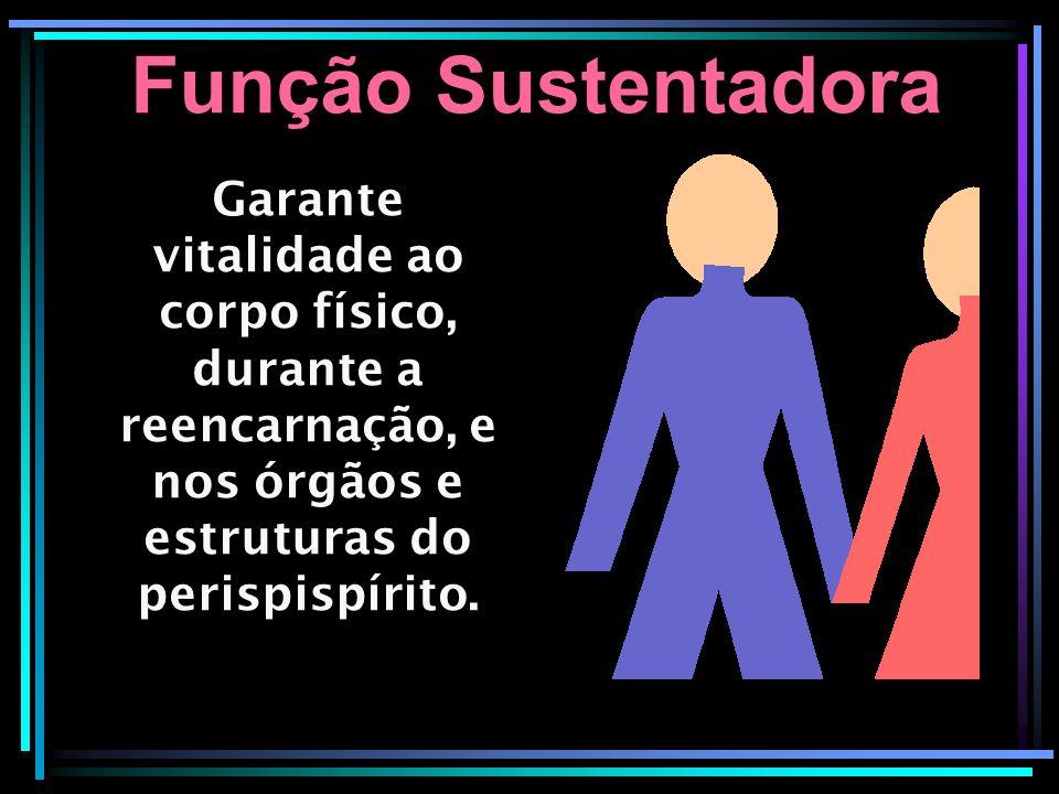 Função Sustentadora Garante vitalidade ao corpo físico, durante a reencarnação, e nos órgãos e estruturas do perispispírito.