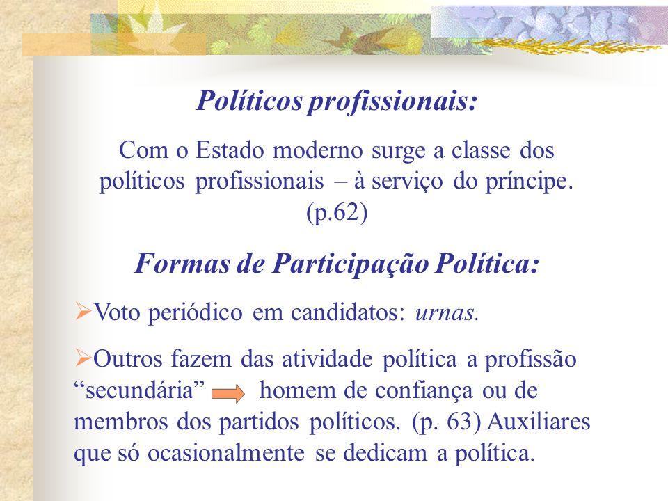 Políticos profissionais: Formas de Participação Política: