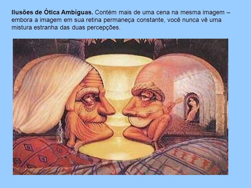 Ilusões de Ótica Ambíguas