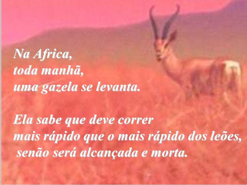 Na Africa, toda manhã, uma gazela se levanta