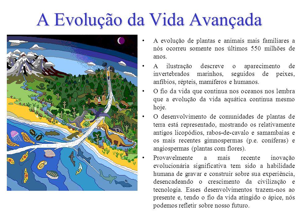 A Evolução da Vida Avançada