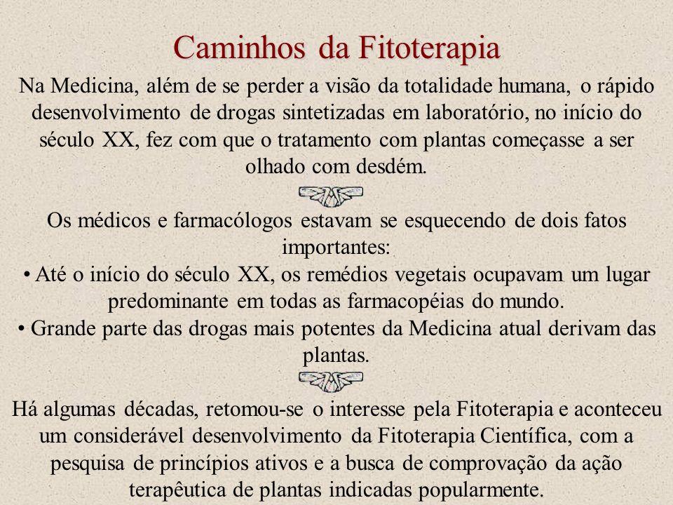 Caminhos da Fitoterapia