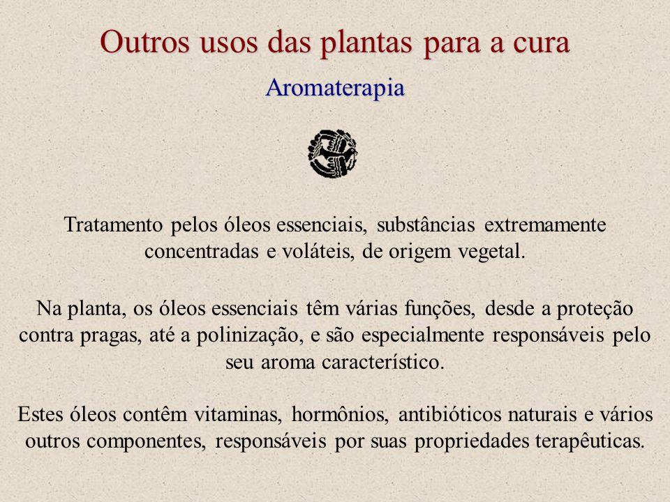 Outros usos das plantas para a cura