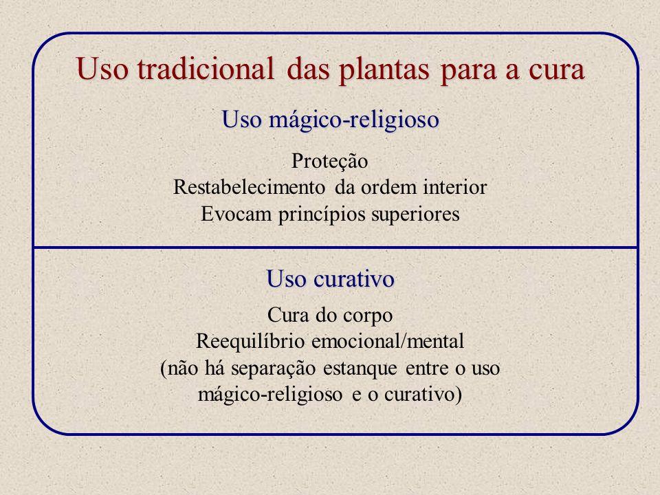 Uso tradicional das plantas para a cura