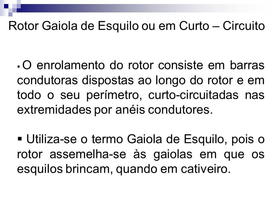 Rotor Gaiola de Esquilo ou em Curto – Circuito