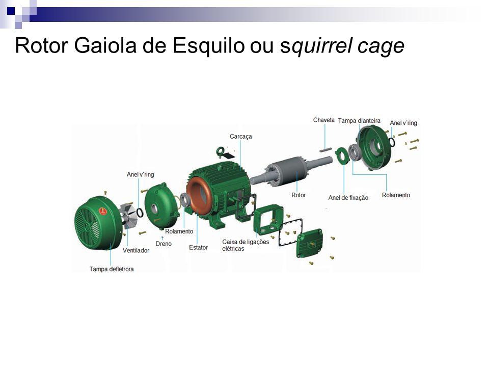 Rotor Gaiola de Esquilo ou squirrel cage