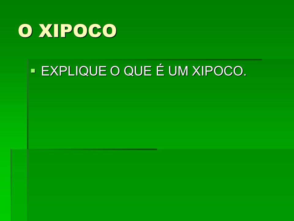 O XIPOCO EXPLIQUE O QUE É UM XIPOCO.