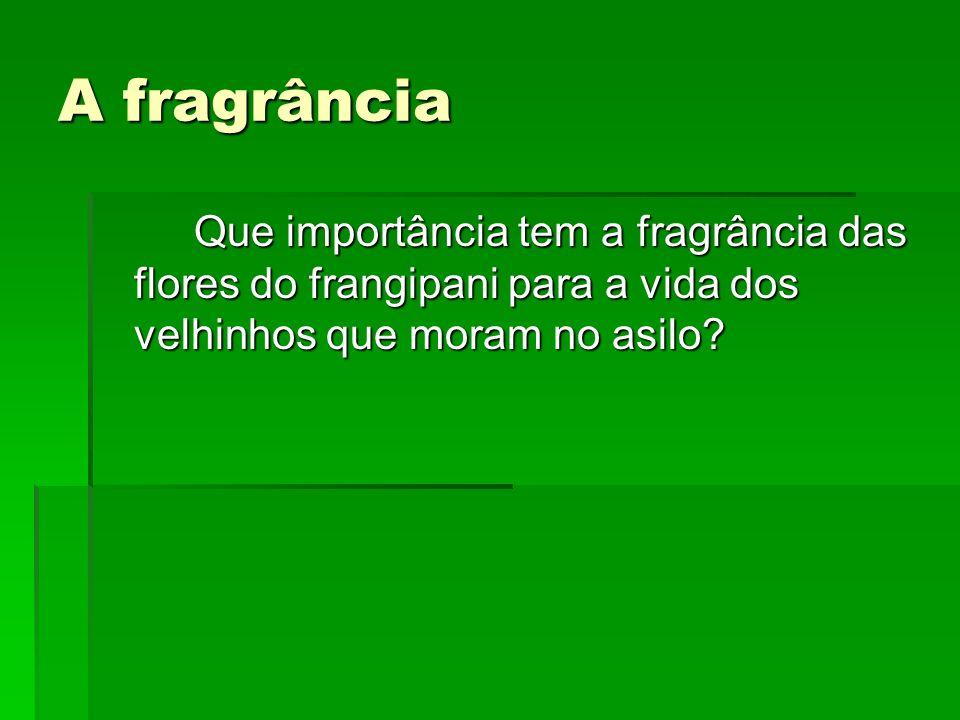 A fragrância Que importância tem a fragrância das flores do frangipani para a vida dos velhinhos que moram no asilo