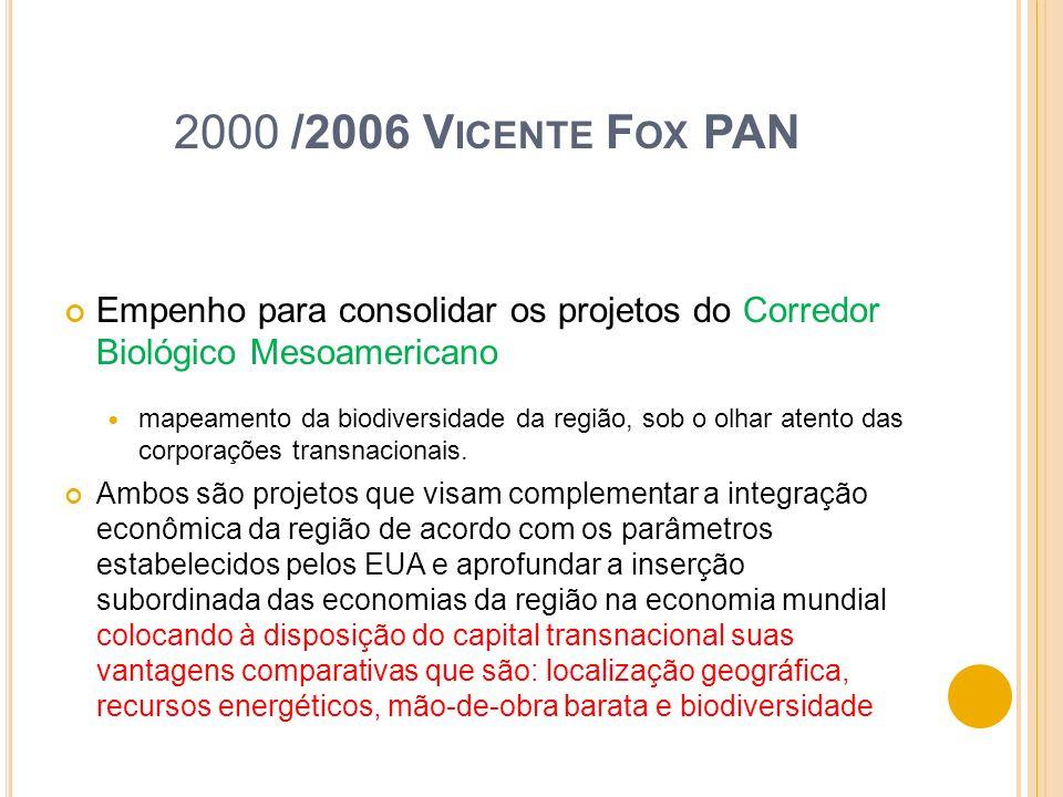 2000 /2006 Vicente Fox PAN Empenho para consolidar os projetos do Corredor Biológico Mesoamericano.