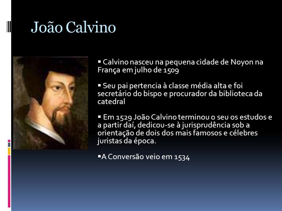 João Calvino Calvino nasceu na pequena cidade de Noyon na França em julho de 1509.