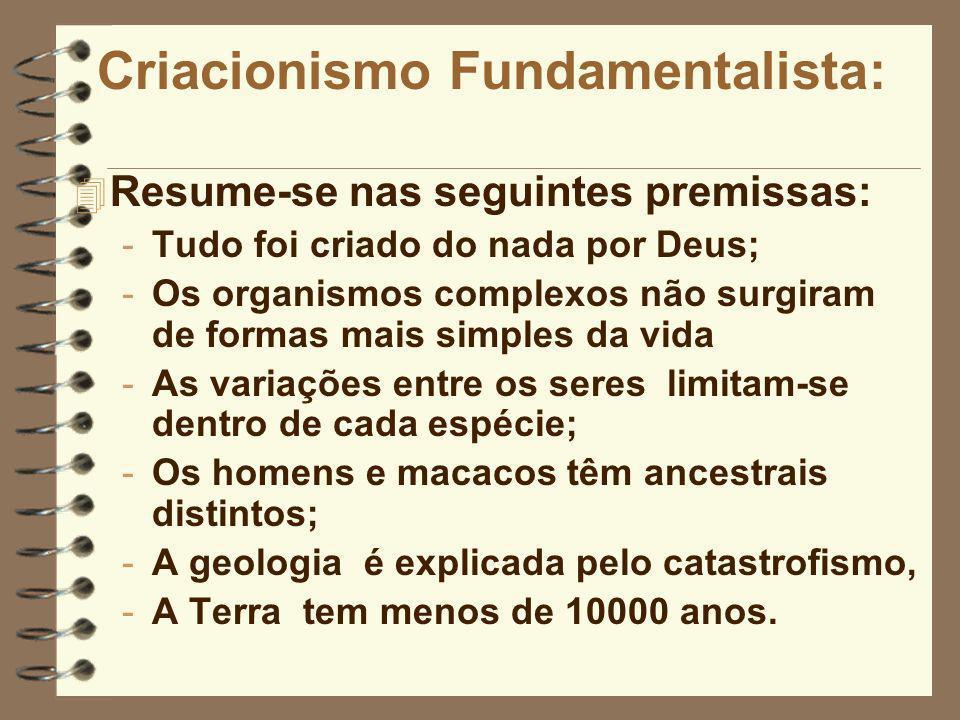 Criacionismo Fundamentalista: