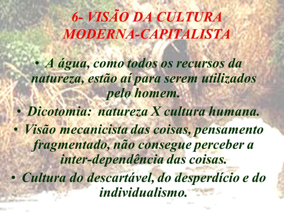 6- VISÃO DA CULTURA MODERNA-CAPITALISTA