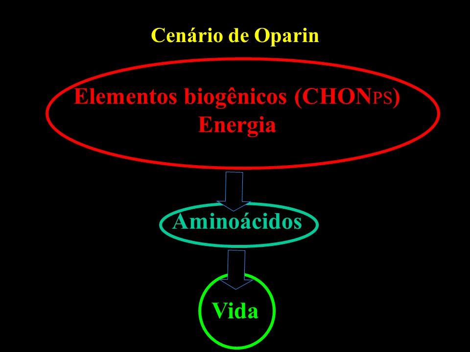 Elementos biogênicos (CHONPS) Energia