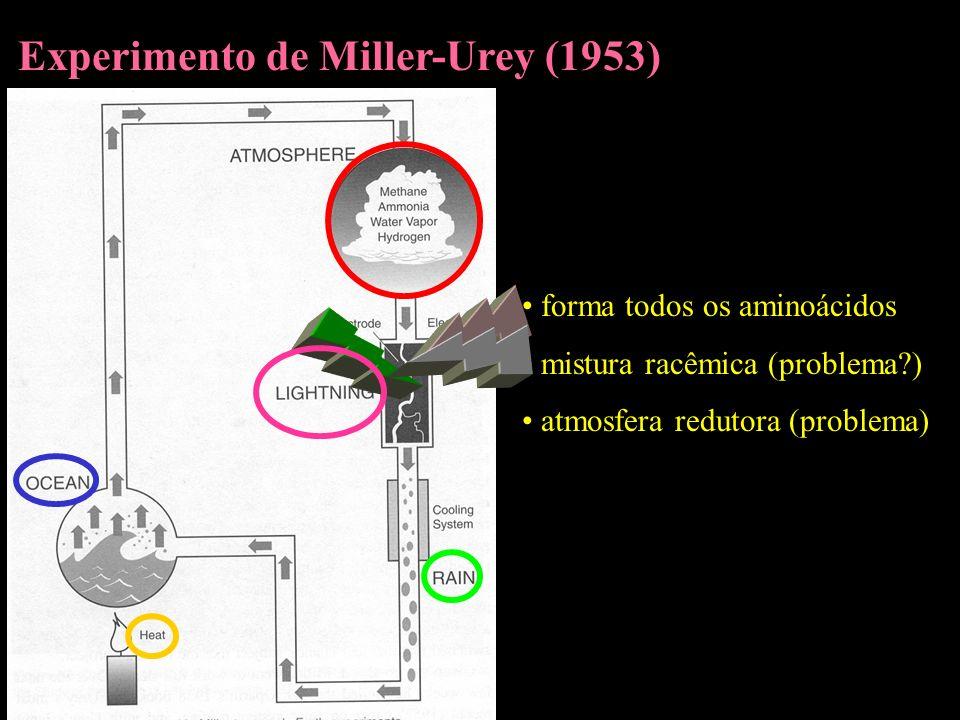 Experimento de Miller-Urey (1953)