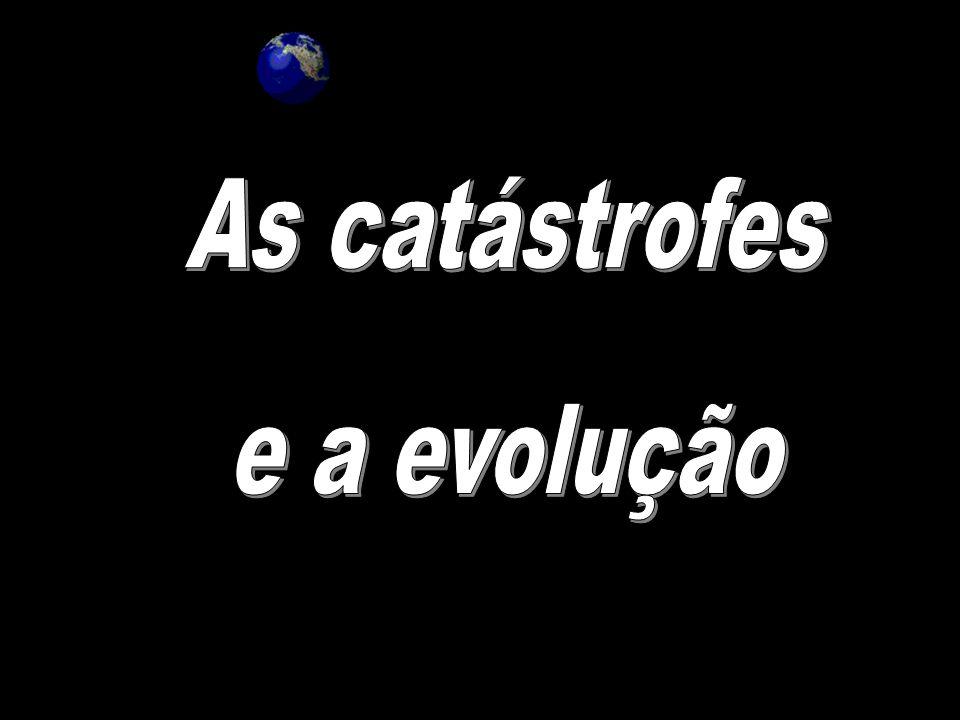 As catástrofes e a evolução