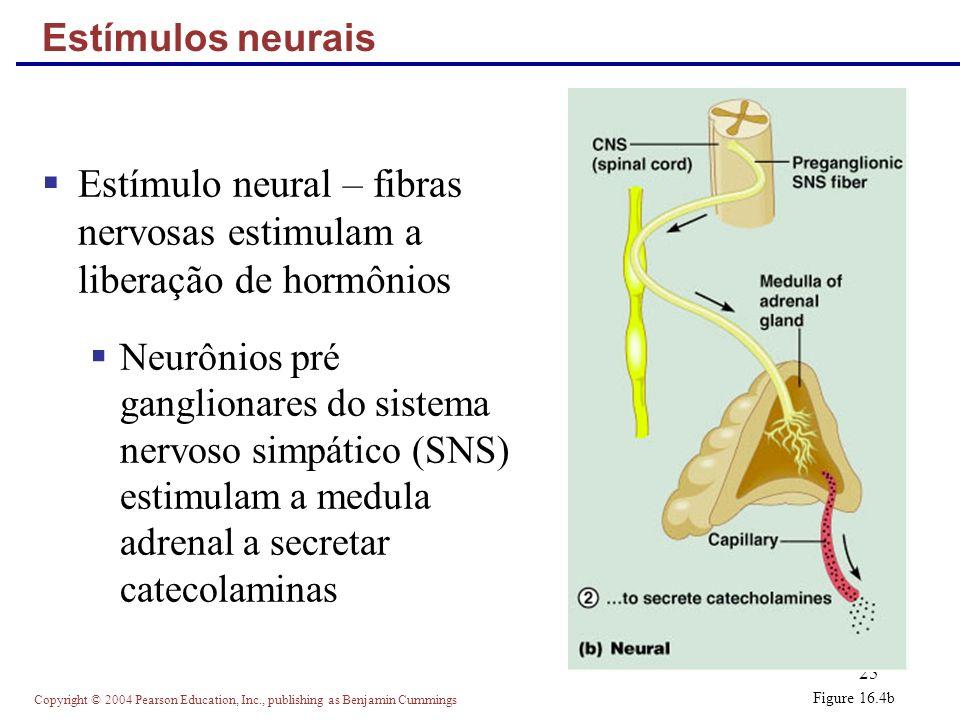 Estímulo neural – fibras nervosas estimulam a liberação de hormônios