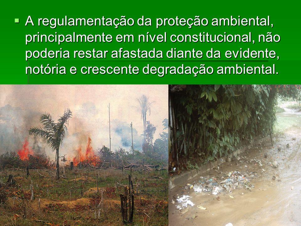 A regulamentação da proteção ambiental, principalmente em nível constitucional, não poderia restar afastada diante da evidente, notória e crescente degradação ambiental.