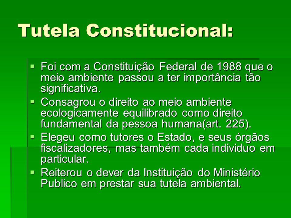 Tutela Constitucional: