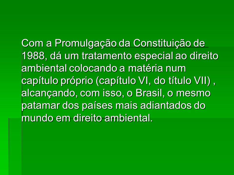 Com a Promulgação da Constituição de 1988, dá um tratamento especial ao direito ambiental colocando a matéria num capítulo próprio (capítulo VI, do título VII) , alcançando, com isso, o Brasil, o mesmo patamar dos países mais adiantados do mundo em direito ambiental.