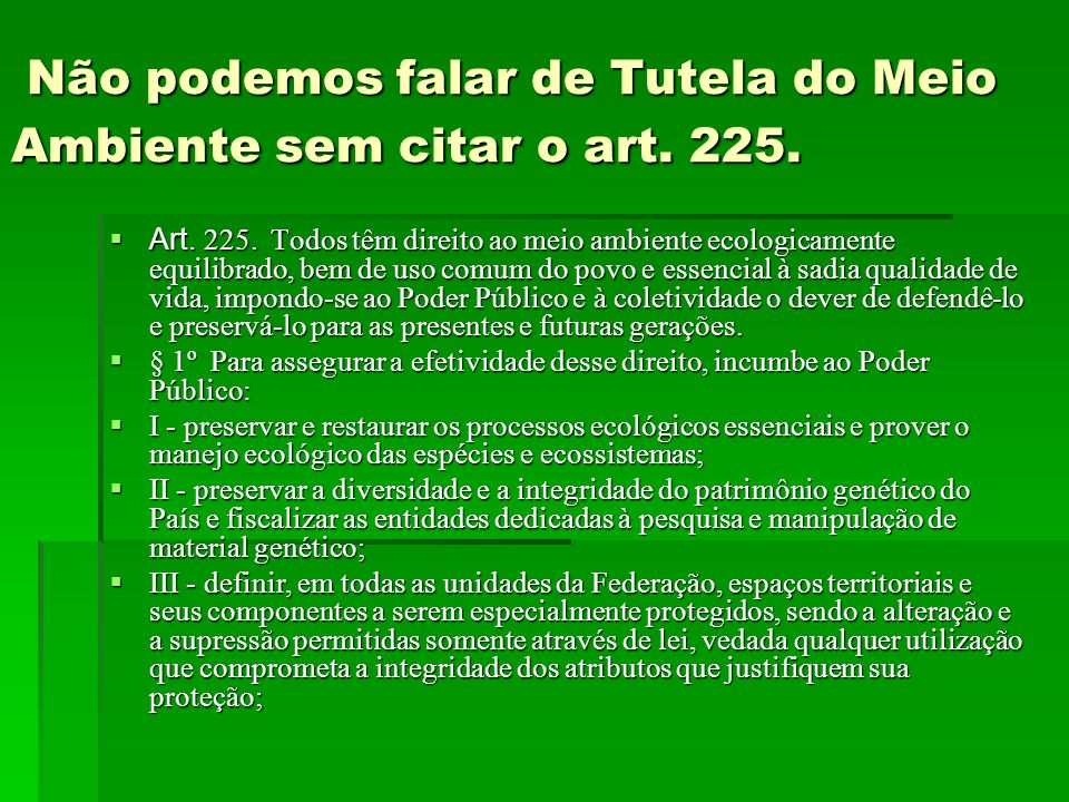 Não podemos falar de Tutela do Meio Ambiente sem citar o art. 225.