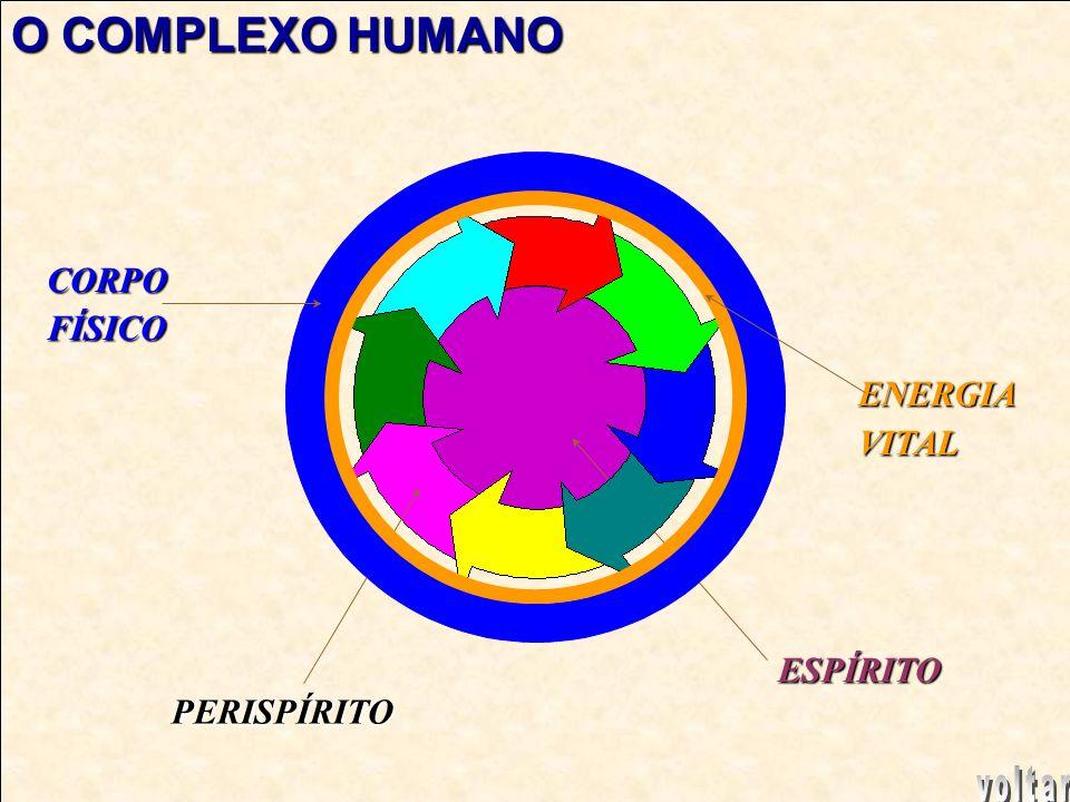 O COMPLEXO HUMANO CORPO FÍSICO ENERGIA VITAL ESPÍRITO PERISPÍRITO