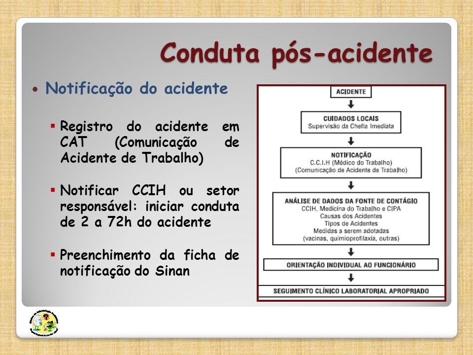 Conduta pós-acidente Notificação do acidente