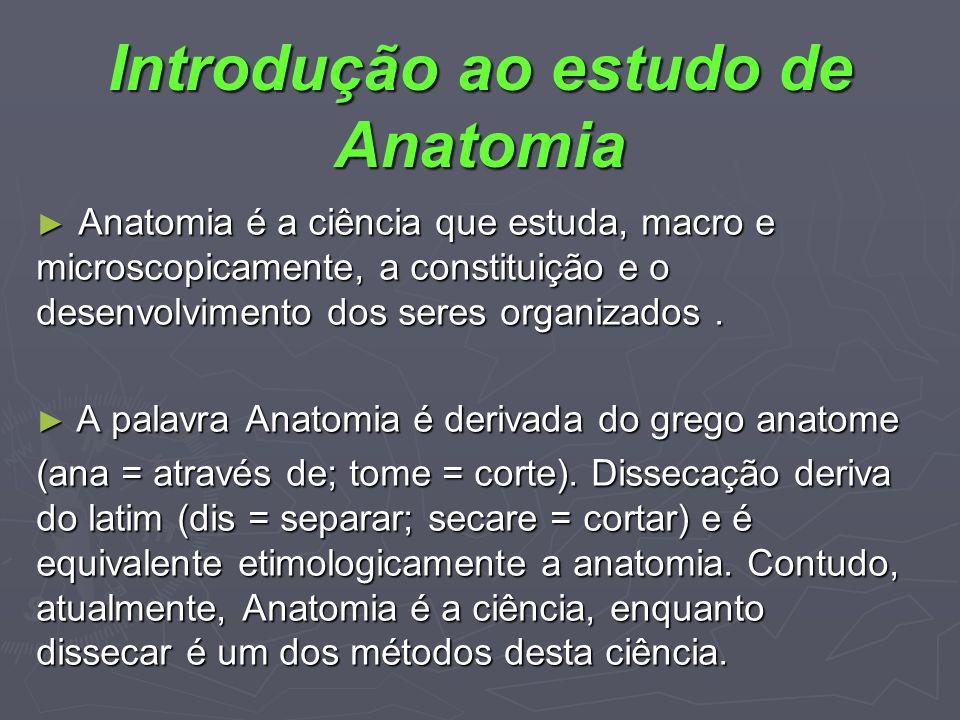 Introdução ao estudo de Anatomia