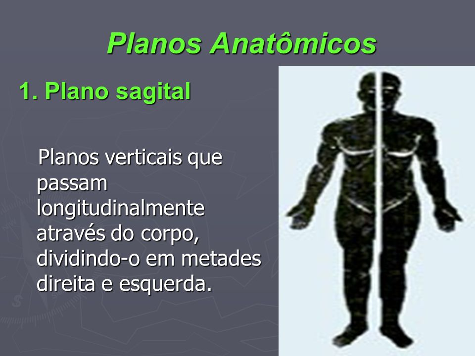 Planos Anatômicos 1. Plano sagital