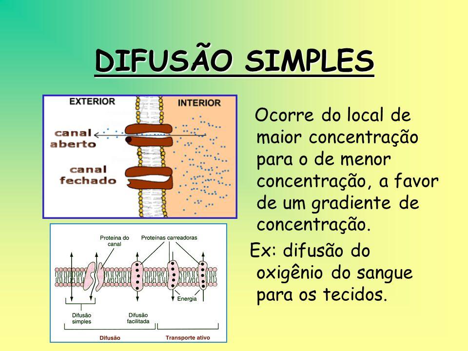 DIFUSÃO SIMPLESOcorre do local de maior concentração para o de menor concentração, a favor de um gradiente de concentração.
