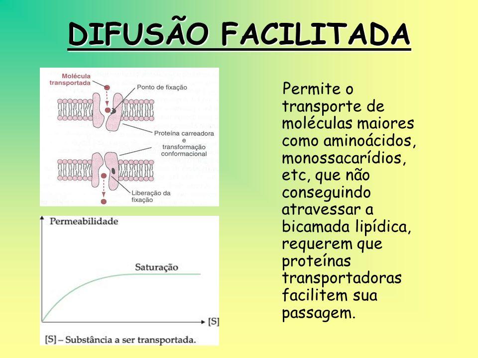DIFUSÃO FACILITADA