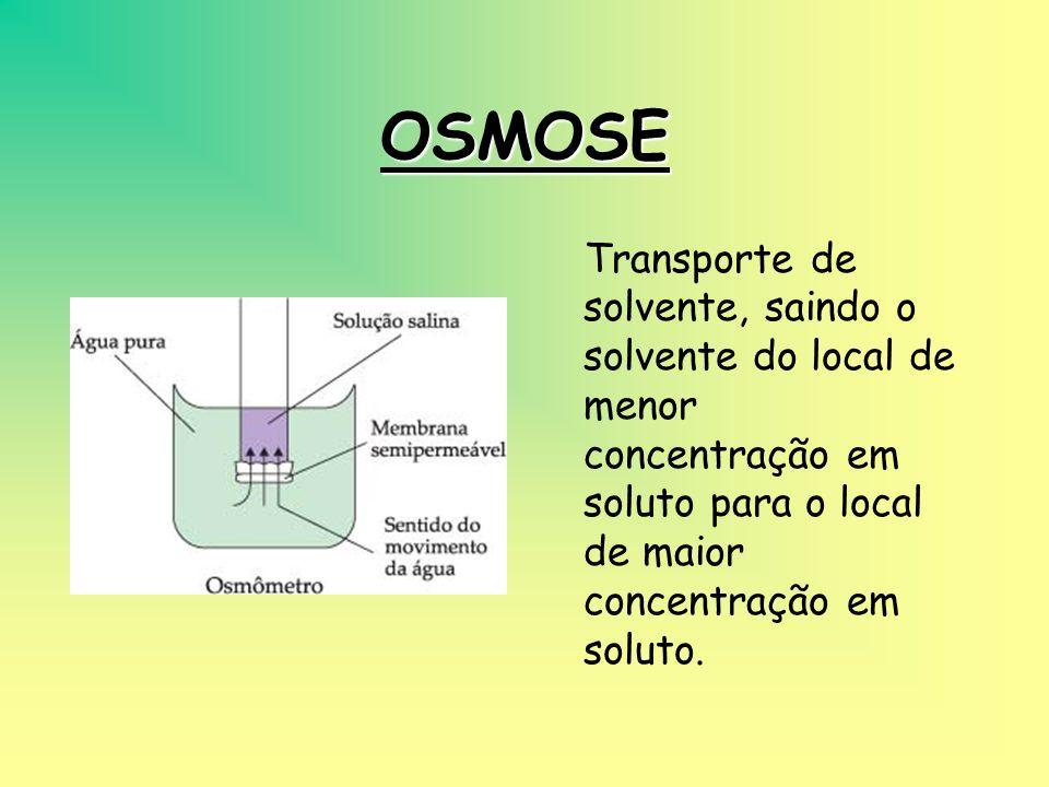 OSMOSE Transporte de solvente, saindo o solvente do local de menor concentração em soluto para o local de maior concentração em soluto.