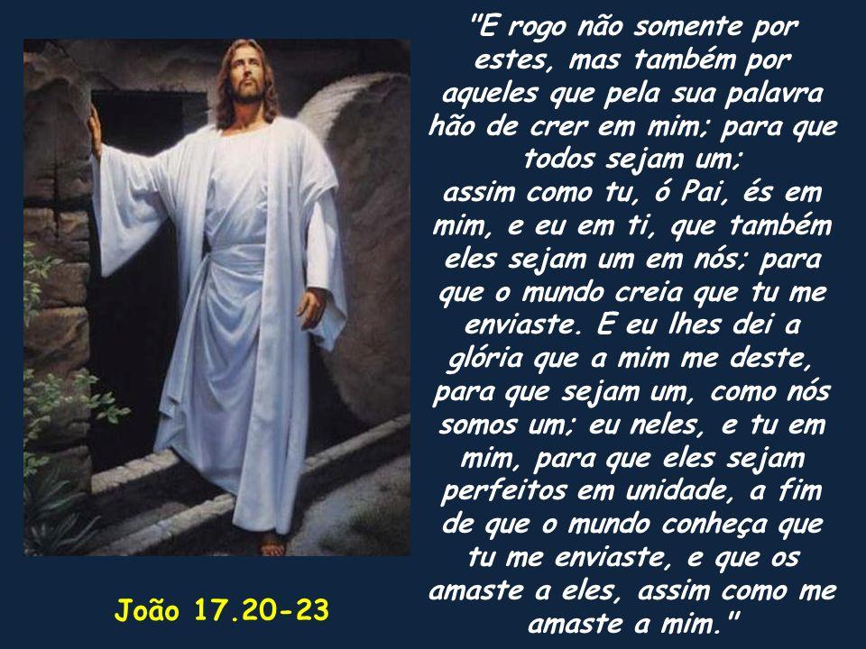 E rogo não somente por estes, mas também por aqueles que pela sua palavra hão de crer em mim; para que todos sejam um;